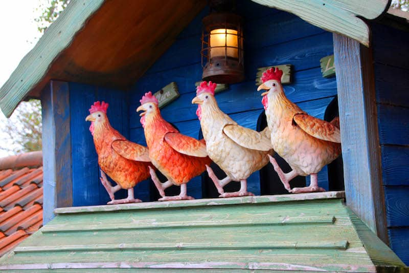 Question 3 How many chickens are dancing in their hen house at Sundown Advenureland