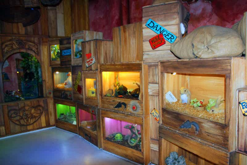 Question 5 at the Pet Shop in the marketplace there is Pet Shop - How many rabbits are for sale at Sundown Advenureland